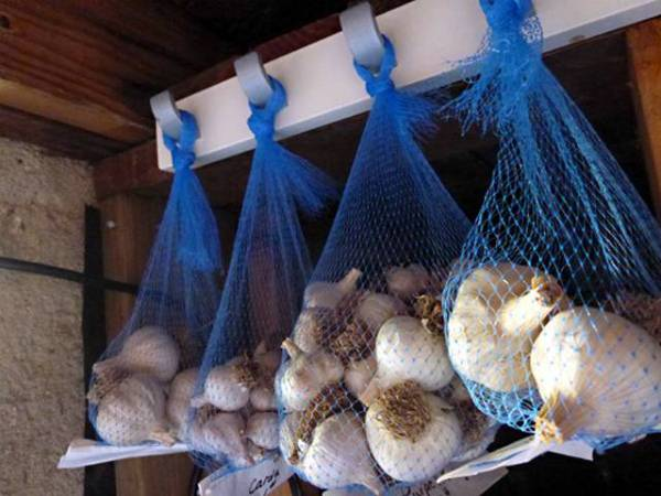 Правила хранения чеснока в домашних условиях зимой