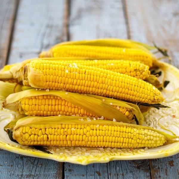 Возможно ли выращивание кукурузы на даче, и что для этого требуется?